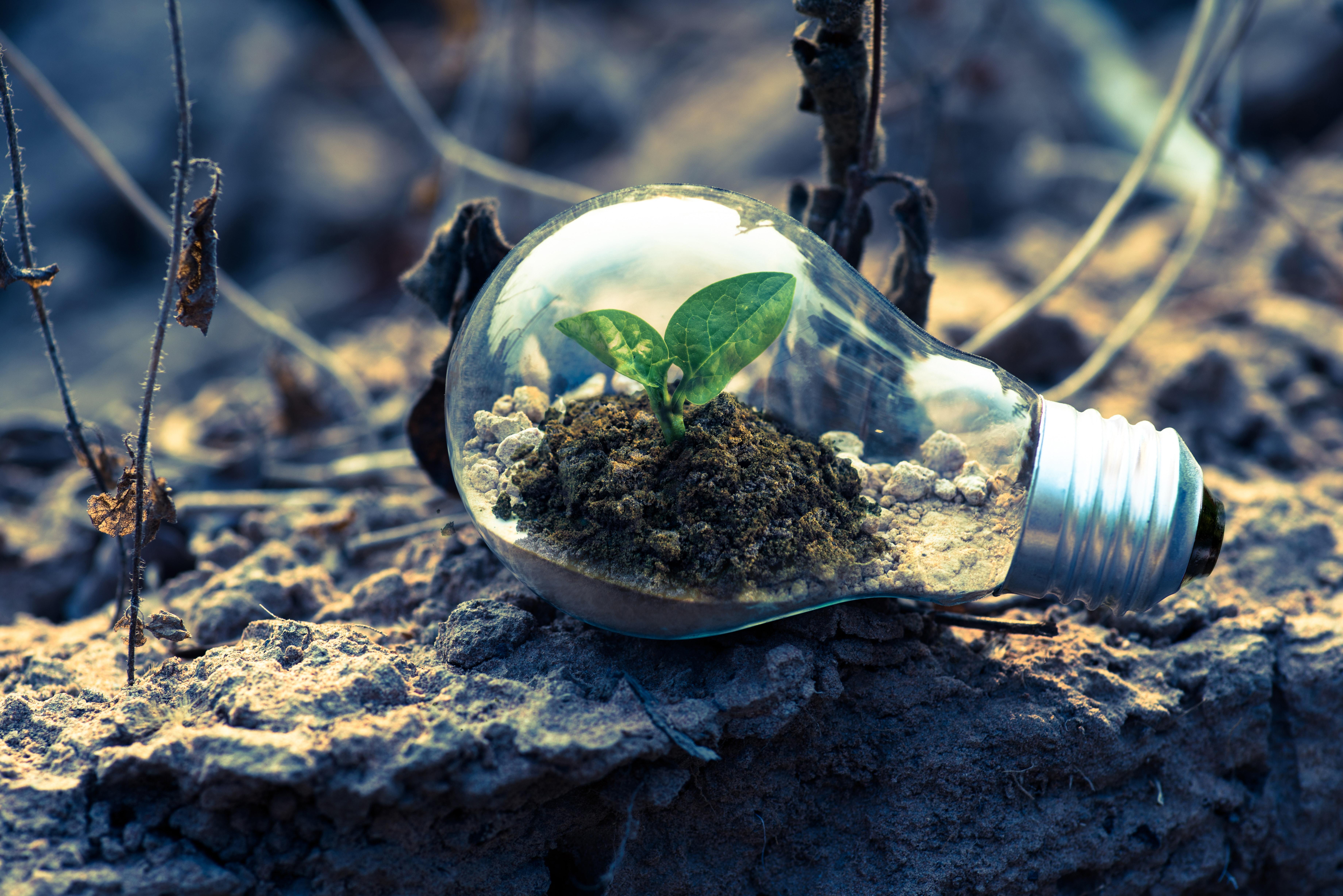 GROWTH IS INTENTIONAL | Emmanuel Ahmadu