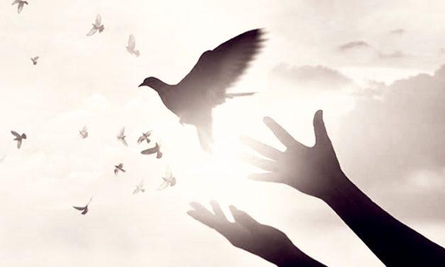 Article: FORGIVENESS – Tobiloba Emmanuel